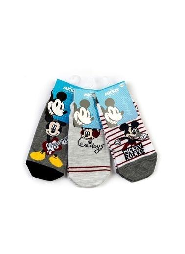 Mickey Mouse 6'lı Patik Çorap Renkli